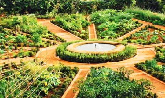 permakulturna-gradina-mandala